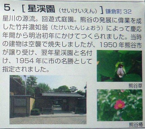 IMGP1185seikei.jpg