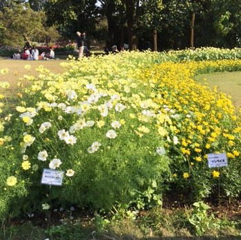 IMG_1065 植物園.jpg