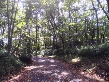 IMG_3586森林公園.jpg