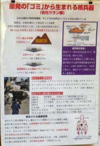 IMGP3787trr.jpg