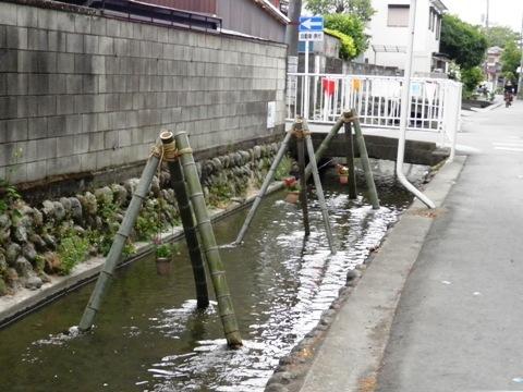 P5180472成田用水.jpg